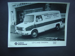 Leyland Sherpa - Boucherie Vanderlynden - STEENVOORDE (France) - Automobiles