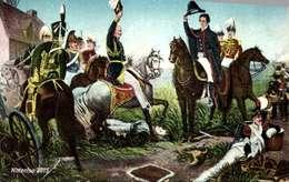 Personnages Historiques / NAPOLEON /  WATTERLOO       / LOT  3009 - Personaggi Storici