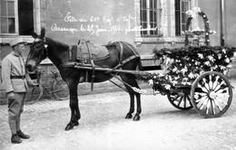 Besançon - Fête Du 60e Régt D'Infanterie Le 25 Juin 1936. Cliché Larcher. - Besancon