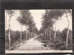 Lommel   Proprieté Des Stevensvennen ( Dreve Des Bouleaux ) - Lommel