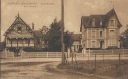 Topurgeville  Les Sablons    Chalet Moderne Et L'Alcyon - France