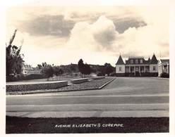 Afrika Afrique Mauritius  Geen Postkaart Wel Kleine Foto Photo  8,5x 7 Cm  Avenue Elizabeth II Curepipe Barry 1890 - Maurice