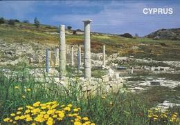 * Cyprus Postcard * Limassol Ancient Amathous * Collection : Themis Christodoulou * Number : C30 * - Chipre