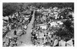 Afrika Afrique Mauritius Photos H T Hardy Thomas ILE MAURICE, Cyclone Carol 1960 Photo    Barry 1922 - Maurice