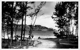 Mauritius Carte Postale De Luxe, Photo E. Jean-Louis Curepipe Beautés De L'Ile Maurice  Maconde Savanne      Barry 1934 - Maurice
