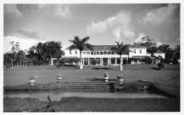 Mauritius Carte Postale De Luxe, Photo E. Jean-Louis Curepipe Beautés De L'Ile Maurice  Le Reduit Moka      Barry 1936 - Mauritius