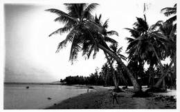 Mauritius  Photo Jean-Louis Curepipe Beautés De L'Ile Maurice  La Pointe Aux Sables, Port Louis CPA De Luxe   Barry 1948 - Mauritius