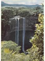 Mauritius Photo Siegfried Sammer  ILE MAURICE - Cascadede Chamarel   Barry 1962 - Maurice