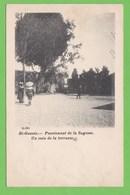 SAINT-GENOIS   -   Pensionnat De La Sagesse,un Coin De La Terrasse - Autres