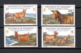 GUERNSEY :   Capre, Oro Di Guernsey  - 4 Val.  MNH**  Del   5.08.1980 - Guernesey