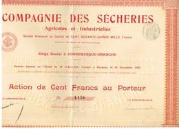 Titre Ancien - Compagnie Des Sécheries Agricoles Et Industrielles - Titre De 1907 - Agriculture