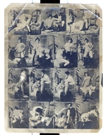 PHOTO MULTIPLE  ALBUMIN  SUR PAPIER MINCE  DEBUT XXeme EROTIQUE  PORNO  FEMININ NU NUDE Dim.:11X14.50cm - Belleza Feminina (...-1920)