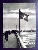 Card Carte Karte Lithuania Palanga Sea Pier Bridge - Litauen