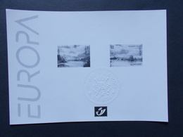 BELGIQUE -  Feuillets Noir & Blanc  Europa 1999  N° 2815/16  ( Voir Photo ) 34 - Zwarte/witte Blaadjes