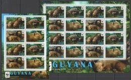 D497 2011 GUYANA WWF WILD ANIMALS BUSH DOG #8194-97 MICHEL 36 EURO SH+KB MNH - W.W.F.