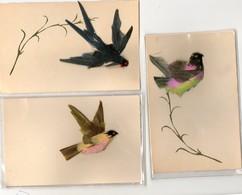 Oiseaux.  3 C.P.  Oiseaux Avec Leurs Plumes Véritables.  Scan Du Verso. - Vogels