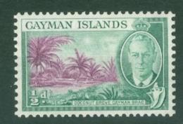 Cayman Islands: 1950   KGVI   SG136   ½d   MNH - Cayman Islands