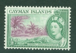 Cayman Islands: 1953/62   QE II - Pictorial   SG149   ½d     MNH - Cayman Islands
