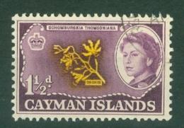 Cayman Islands: 1962/64   QE II - Pictorial   SG167   1½d     Used - Cayman Islands