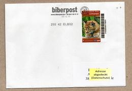 Privatpost -  Biberpost  - Jungtier Luchs (Lynx Lynx) Auf Gelaufenem Brief - Felinos