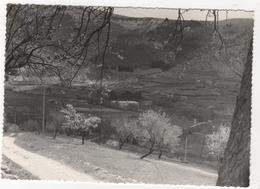 CPSM 26 : MONTBRUN-les-BAINS - Vue Sur Le Centre Thermal - Provence Touristique - Ed. Noppen - - Autres Communes