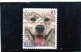 2019 Svizzera - Il Cane - Usati