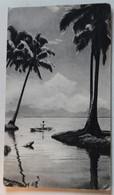 CPA Les îles Tonga L'île Des Amis Années 50 Laboratoires Biomarine Plasmarine Docteur Leroux Villiers Charlemagne - Tonga