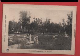 X12 Guyane St Laurent Du Maroni La  Pépinière - Saint Laurent Du Maroni