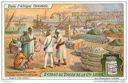 H4 NEGRES WANIAMWESI EMBAUCHES A DAR ES SALAAM RECOLTES AFRIQUE ORIENTALE LIEBIG 1865 . - Liebig