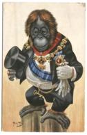 Arthur Thiele Dressed Monkey Lord Mayor Singe Habillé En Maire TSN Serie 781 C. 1908 - Taylor