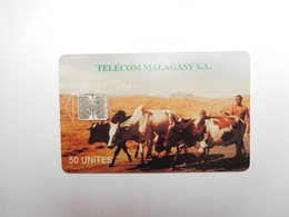 Télécarte Publique , Madagascar , Télécom Malagasay , Zébu - Madagaskar