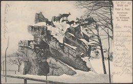 Gruss Aus Peter Und Paul, Steinbock Felsen Im Wildpark, St Gallen, 1905 - Von Schalch & Ebinger AK - SG St. Gall