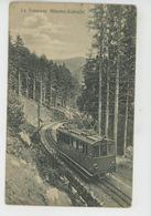 VOSGES - Le Tramway Münster - Schlucht - Autres Communes