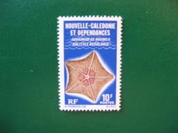 NOUVELLE CALEDONIE YVERT POSTE ORDINAIRE N° 419 NEUF** LUXE - MNH - COTE 1,50 EURO - Nouvelle-Calédonie