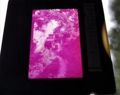 Bavegem Watermolen Dia In Frame Slide Mill Moulin - Diapositives