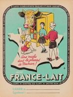 PROTÈGE-CAHIER PUB FRANCE LAIT, Une Vache Dans Le Placard De Maman ! Avec # Sortes De Laits. Années 50 - Leche