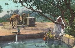 "6170 "" PUITS AFRICAIN ""ANIMATA-DROMEDARIO CART. POST. ORIG. SPED.1911 - Scene & Tipi"