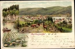 Lithographie Georgenthal In Thüringen, Gesamtansicht, Kurhaus Schützenhof, Hirsch, Rehe - Germany