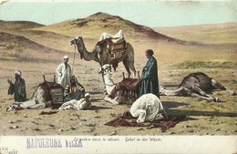 "6173 "" LA PRIERE DANS LE DESERT - GEBET IN DER WUSTE "" ANNULLO DI BETLEMME-CART. POST. ORIG. SPED.1905 - Palestina"
