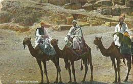 """6174 """" BEDUIN EN VOYAGE """"-CART. POST. ORIG. SPED.1909 - Egitto"""