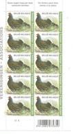 OCB 4305 Postfris Zonder Scharnier ** Volledig Vel Plaat 1 - 1985-.. Birds (Buzin)