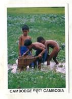 CAMBODIA - AK 368640 The Children Are Fishing - Cambodja