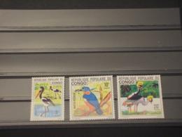 CONGO - 1976 UCCELLI 3 VALORI - NUOVI(++) - Nuovi