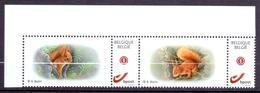 Belgie - 2019 - OBP  - **  Duostamp Eekhoorn - A. Buzin ** - 1985-.. Birds (Buzin)