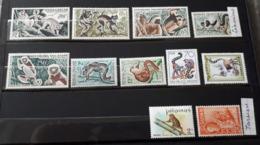 Série De 11 Timbres Lémuriens Tarsiers Neufs Ss Charnières ** TTB - Lemur Tarsier - Timbres