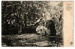 ANVERS - Jardin Zoologique. Bassin Des Otaries - Dos Non Divisé - Antwerpen