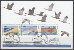 BRD  Block 36, Gestempelt, Vorpommersche Boddenlandschaft 1996 - [7] Repubblica Federale
