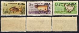 CUBA - 1964 - SVILUPPO DELL'INDUSTRIA NAZIONALE - MNH - Nuovi