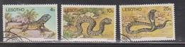 LESOTHO Scott # 270-1, 273 Used - Reptiles & Snakes - Lesotho (1966-...)