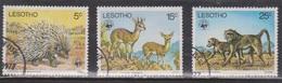 LESOTHO Scott # 229, 231-2 Used - Animals - Lesotho (1966-...)